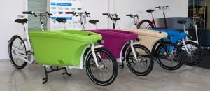 Beispiele für die Farbkombinationen vom Dolly bike